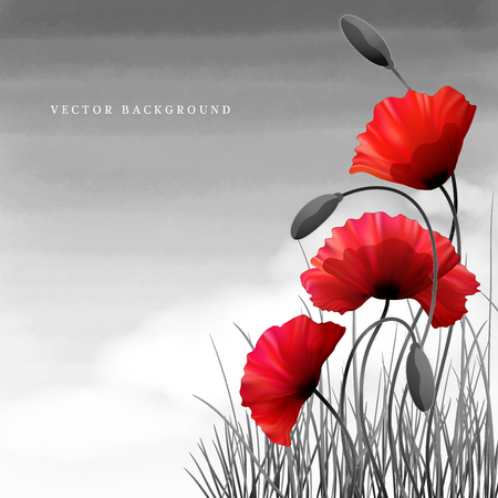 Vector background or card. Poppies and grass. White cloud and watercolor sky. Imitation black and white photos. Perfect for announcements, invitations and greetings. Remembrance Day