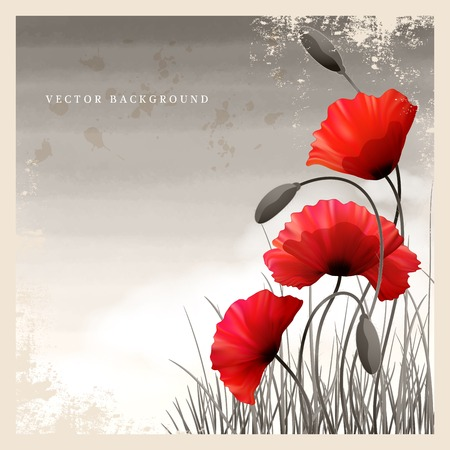Vector vintage card. Poppies and grass. White cloud and watercolor sky. Place for your text. Imitation black and white old photos. Perfect for announcements invitations and greetings. Remembrance Day Illustration