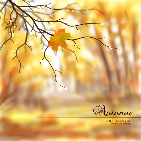 Vector illustration. Autumn composition with wet tree branches and maple leaf. Blurred misty background. Place for your text.