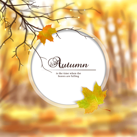 Autumn composition with wet tree branches and maple leaf. Blurred misty background. Round frame for your text.