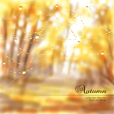 A Vector illustration. Autumn composition with spider web and drops of dew or rain. Blurred misty background. Place for your text.