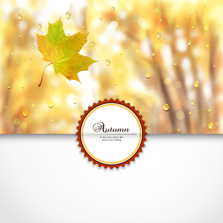 Vector envelope for invitations or congratulations. Autumn composition with maple leaf. Rain drops on glass. Blurred misty background. Place for your text. Illustration