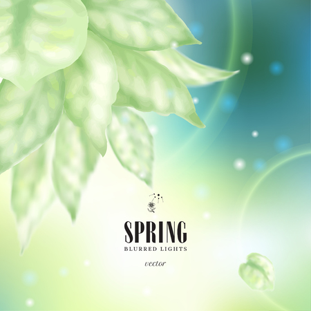 Vector illustration. Blurred lights on green background and delicate leaves. Spring collection.