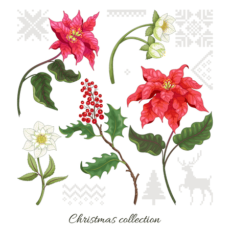 Set of elements of poinsettia flowers, berries, hellebore and scandinavian ornament to create designs. Christmas collection.