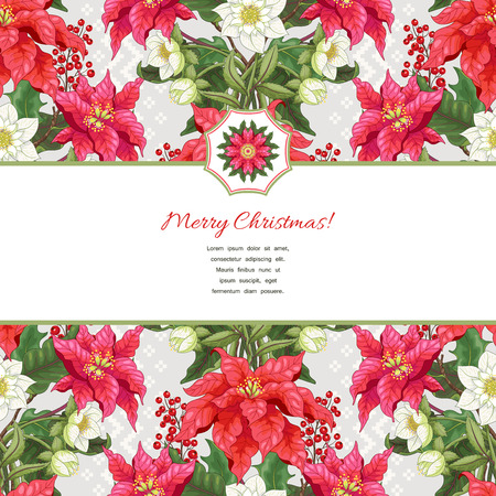 Vector card with ribbon for your text. Lines of poinsettia flowers, berries and hellebore. Scandinavian ornament on backdrop. Christmas collection.