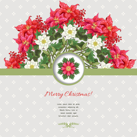 Vector card with ribbon. Round floral pattern. Branches with holly and poinsettia and hellebore flowers. Scandinavian ornament on backdrop. Christmas collection. Place for your text.