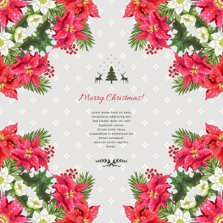 Vector card with holly, fir-tree, hellebore and poinsettia flowers in corners. Norwegian ornament. Christmas collection. Place for your text.