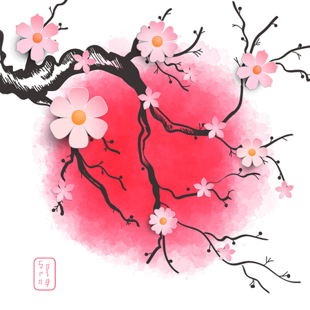 Vector illustration with sakura branch on a red background. The inscription in Japanese style - Spring.