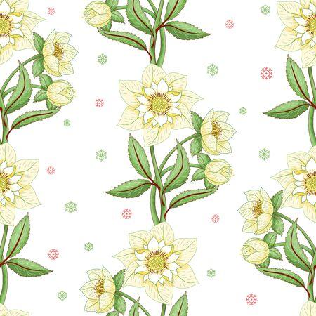 Winter ornament. Seamless vector background with lines of hellebore flowers Illusztráció