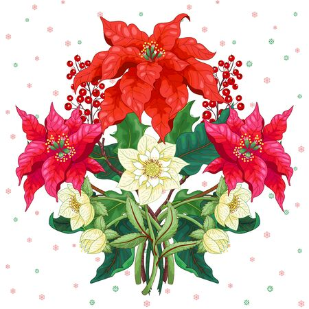 Vector element for design with branches of poinsettia flowers, holly berries and hellebore. Winter ornament on seamless background Illusztráció