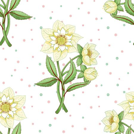 Seamless vector background. Hellebore flowers on winter snow pattern