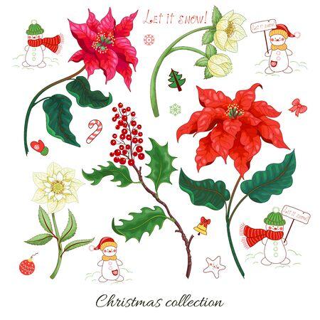 Set of Christmas star flowers,