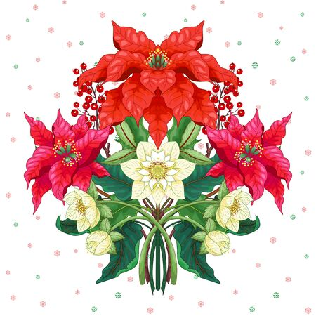 Vector element for design. Symmetrical branches of poinsettia flowers, holly berries and hellebore Illustration
