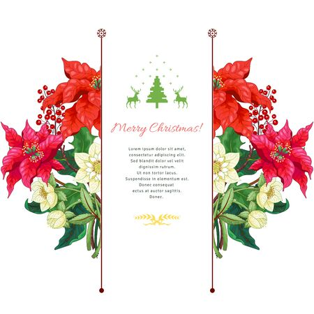 Vector card. Holly, hellebore and poinsettia flowers. Place for your text