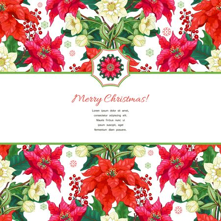 Christmas card with place for your text. Borders of poinsettia flowers, holly berries and hellebore. Winter snow ornament on backdrop Illustration