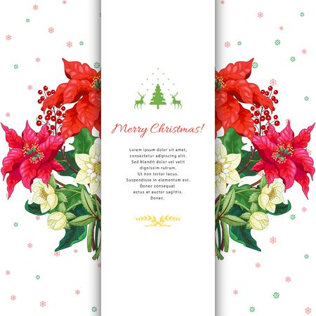 Branches of poinsettia flowers, holly and hellebore on snowflakes ornament. Christmas background with place for you text Illustration