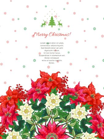 Vector card. Branches of Christmas star and hellebore flowers. Winter ornament and place for your text Illustration