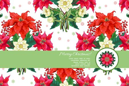 Vector card with place for your text. Christmas star flowers, berries, hellebore. Winter snow ornament on backdrop