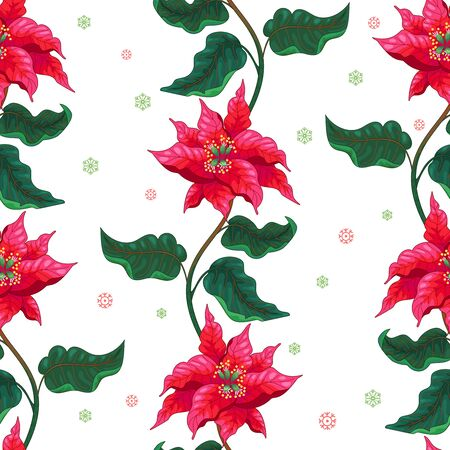 Winter seamless background with lines of Christmas Star flowers and snowflakes