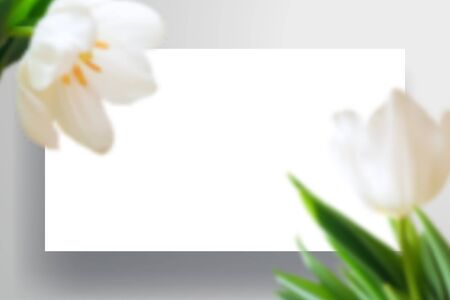 A sheet of paper or layout of the website page with shadow and large tulip flowers in the foreground. Realistic top view mockup for spring, wedding or branding design