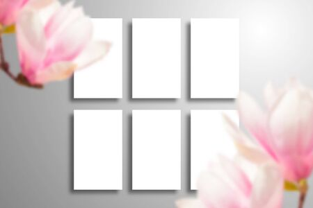 Set of six blank cards with shadow and large magnolia flowers. Realistic template for spring, wedding or branding design