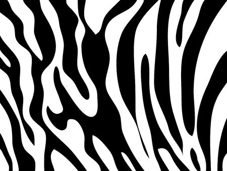 Vector zebra texture Black and White Vector