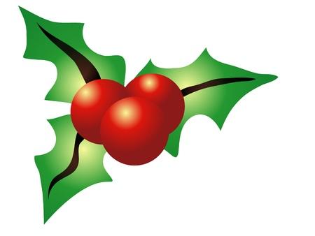 carol: Christmas holly isolated on white background Illustration