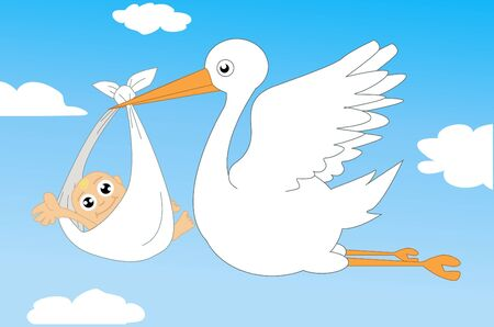 Stork and baby illustration  Vector