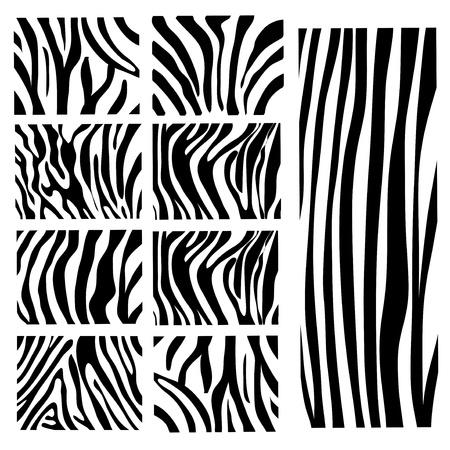 set of  zebra texture Black and White Vector