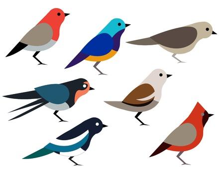 Set of different birds Stock Illustratie