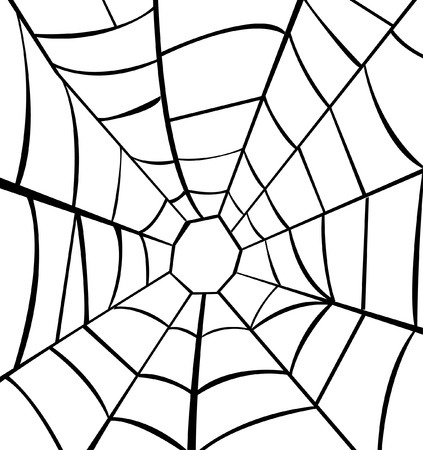 spider net: Vector illustration of cobweb