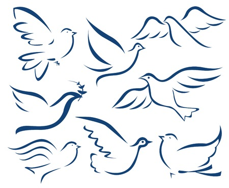 palomas volando: Vector paloma símbolo