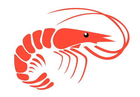 Shrimp Stock Illustrations, Cliparts And Royalty Free Shrimp Vectors