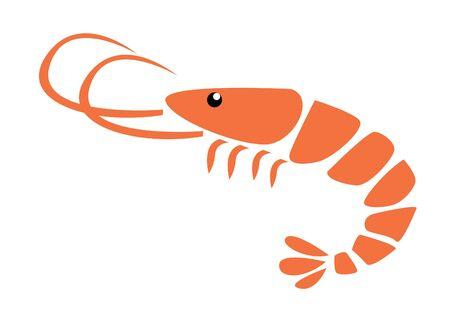 protein food: Shrimp vector illustration