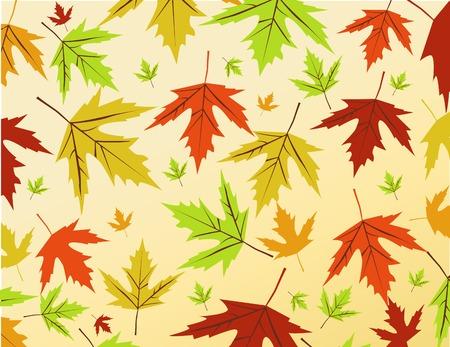 Autumn leaves vector illustration Standard-Bild - 110023817