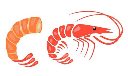 Illustration vectorielle de crevettes Vecteurs