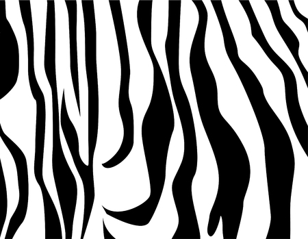 Vector zebra texture Black and White Stock Illustratie