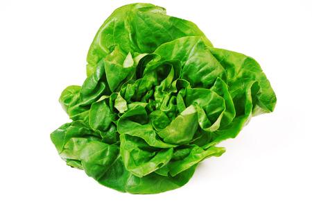 fresh green salad on white background Stockfoto