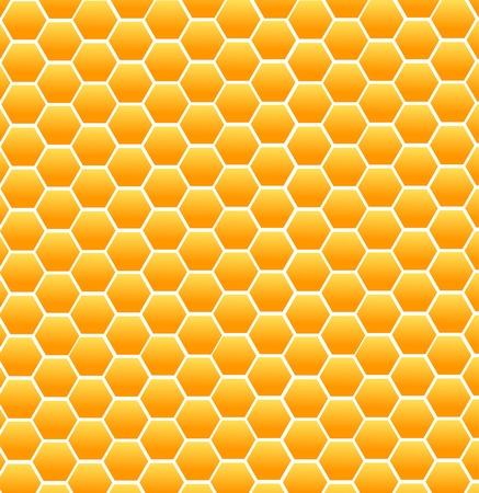 Sweet honey vector illustration