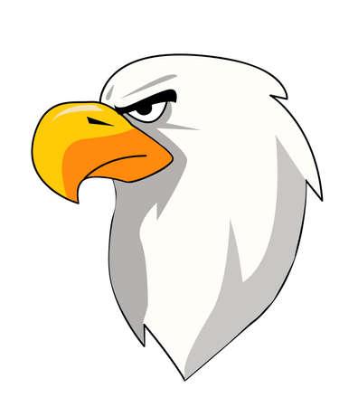 Eagle Head vector illustration 일러스트