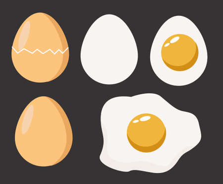 eggs on gray background vector