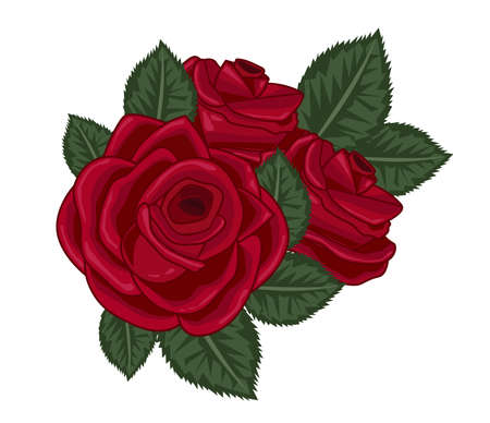 roses vector illustration on white Illusztráció