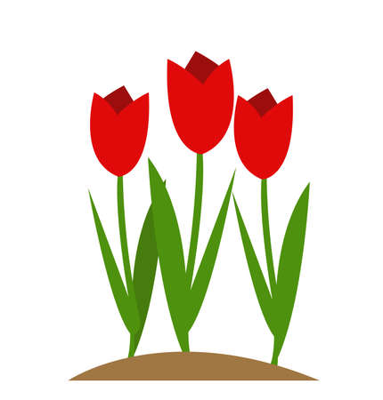 tulip vector illustration design Stock Illustratie