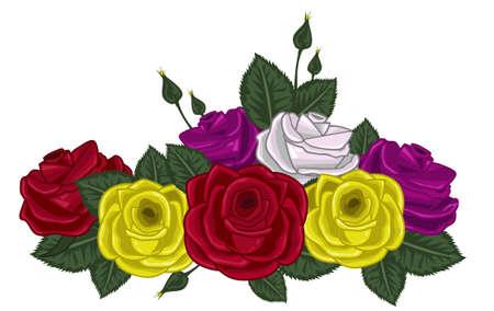 roses vector illustration on white Stock Illustratie