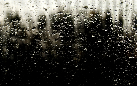Drops on the glass on a dark background Stock Photo - 20204093