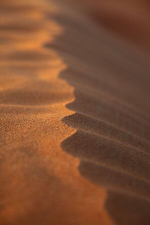 Closeup Photo Of A Rippled Sand Dune