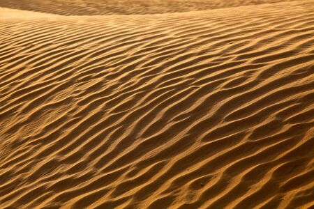 Landscape Of Rippled Sand Waves In The Desert