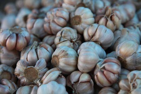 Closeup Of Bunch Of Dried Garlic Heads