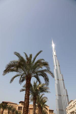 DUBAI, Vereinigte Arabische Emirate - 2112011: Palmen und Gebäude Closeup in der Nähe von Burj Dubai Skyscraper