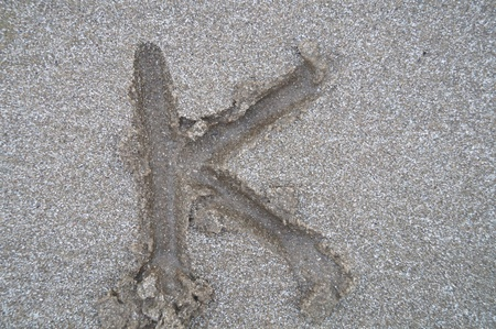 K letter on beach         photo